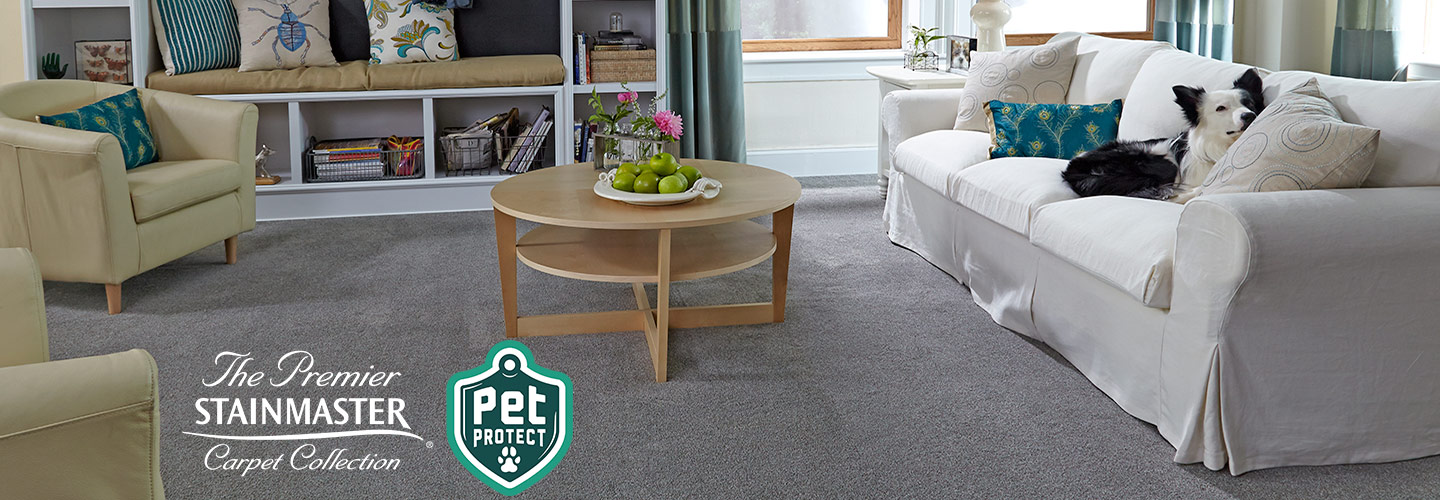 Purchase your Premium Stainmaster Pet Protect carpet today at Flooring & Carpet Warehouse in Coram